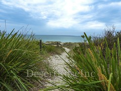 Beach Walkway (1DesertRose) Tags: jervisbay beach australianbeaches greenery scene clouds walkway