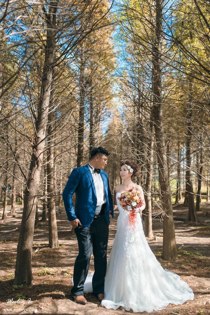 """""""婚攝,自助婚紗,自主婚紗,婚攝wesley,婚禮紀錄,婚禮攝影""""'LOVE40042'"""