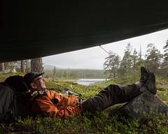 Töfsingdalen III (Gustaf_E) Tags: dalarna forest gustavlindholm landscape landskap nationalpark regn skog sommar sverige sweden tarp töfsingdalen urskog woods