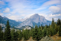 The Rockies (Jessie T*) Tags: rockymountains canadianrockies jaspernationalpark albertacanada mountain landscape forest yellowheadhighway cans2s