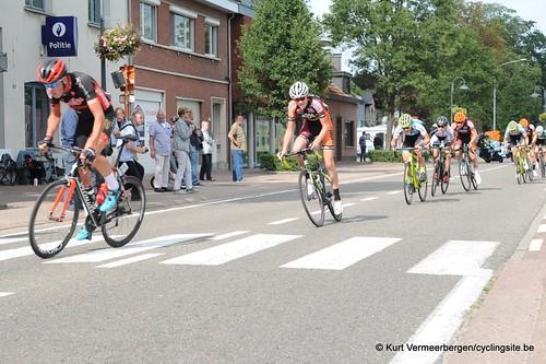 Omloop Vlaamse gewesten (401)