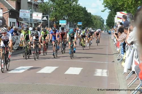 Omloop Vlaamse gewesten (482)
