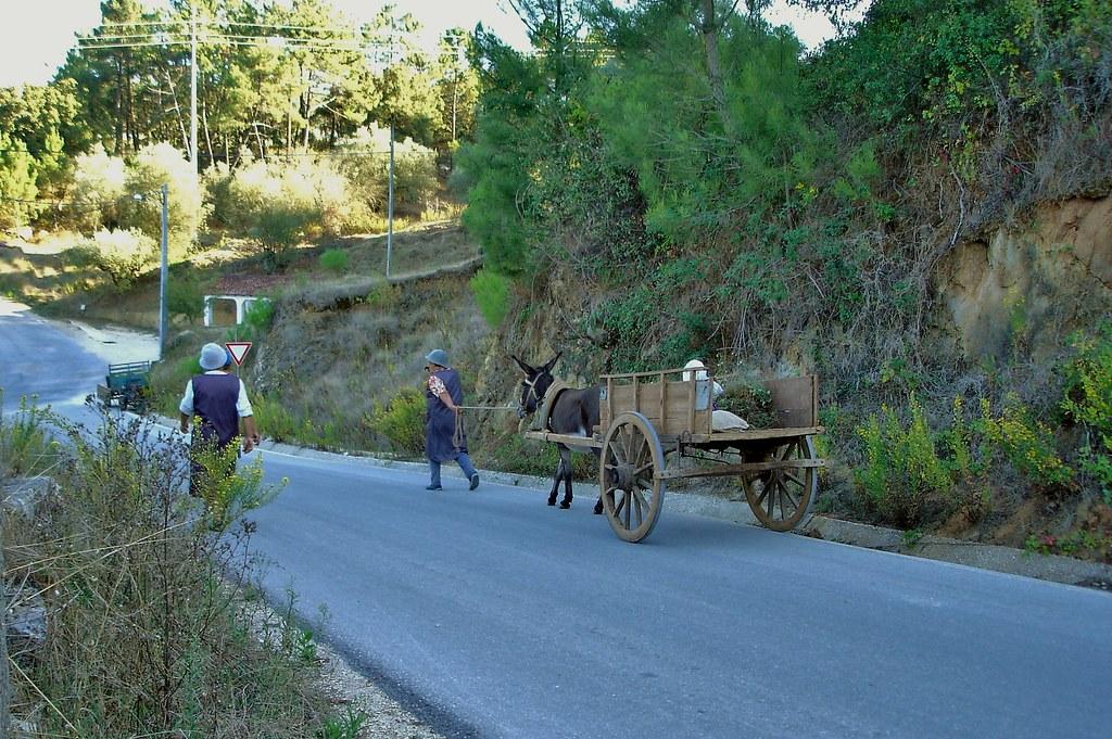 Fonte (prox.), Vérigo — © 2005