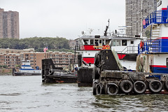 r_170903165_beat0053_a (Mitch Waxman) Tags: 2017greatnorthrivertugboatrace 42ndstreet donjon fireboatjohnjharvey hudsonriver midtown millerslaunch mistert newyorkcity newyorkharbor tugboat workingharborcommittee newyork