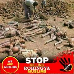 PL #help #UN & #OIC STOP KILLING #ROHINGYA #Muslims (Abdur Rob (সিলেট)) Tags: rohingya help un muslims oic