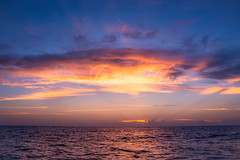 DSC_3974.jpg (Knox Art Works) Tags: horizon shoreline water sunsetwater sunsetbeach sunsetlandscape orange sea beach ocean dramaticsky twilight sky boat tampaflorida view humidity sunset outdoor evening clouds gulfofmexico beautifulsunset bay landscape tampa reflection florida dusk seascape paradise 2017 tropical tranquilscene