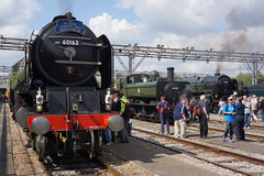 Depot Steam (McTumshie) Tags: 1501 20170902 60163 6430 70013 a1class gwr gwrpanniertank greatwesternrailway london ooc111 oldoakcommon olivercromwell tornado depot diesel locomotive locomotives openday railway steam england unitedkingdom