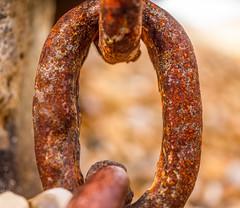 rusty chain (Anthony White) Tags: milfordonsea england unitedkingdom gb chain hurstcastle macromondays macro rust beach pebbles metal