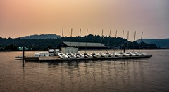 Twelve smokey sailors (Christie : Colour & Light Collection) Tags: tricity vancouver metrovancouver smoky hazy rockypoint portmoody bc canada topaz smoke forestfiresmoke atmosphere inlet marina rockypointpark burrardinlet sailboats masts dock pier wharf water smokey