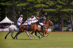 Bethpage Polo at the Park (NYRBlue94) Tags: bethpage longisland newyork polo park horse game match green lawn pony