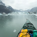 Kayaking near Johns Hopkins Glacier, Glacier Bay National Park