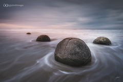 Moeraki (Andy Smith Images) Tags: