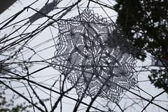 native invader (emocjonalna) Tags: branches trees nespoon lodz poland crochet lace laces koronki festiwalczterechkultur art sztuka streetart instalation modern shadows lines backlight