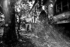 Le manoir mystérieux (vedebe) Tags: noiretblanc netb nb bw monochrome abandonné decay urbain rue soleil rayons architecture urbex