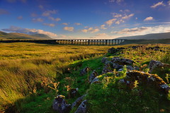 Addiction (images@twiston) Tags: addiction goldenhour 24arches sunset summer evening ribblehead viaduct arches blue sky cloud settle carlisle settlecarlisle yorkshire northyorkshire midland railway main line 1875 battymoss battywifehole sebastopol belgravia jericho scheduledancientmonument arch ribblesdale dales 3peaks whernside ingleborough parkfell simonfell massif national park yorkshiredalesnationalpark moorland moor landscape twentyfour fells manmade stonework shadow shadows imagestwiston godsowncountry