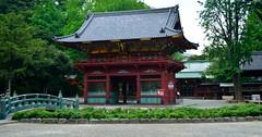 Nezu Jinja (tokyobogue) Tags: tokyo japan nezu nezujinja shrine nezushrine old religion nikon nikond7100 d7100 red gate bridge shitamachi
