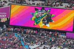 Junger Fan in der Bolt Cam (wuestenigel) Tags: leichtathletik london2017 sports london weltmeisterschaft wm bethenext iaafworldchampionschips audience publikum stadium stadion crowd menge people menschen competition wettbewerb festival sport event performance sportsfan sportfan flag flagge many viele man mann music musik concert konzert grandstand tribüne soccer fusball club verein game spiel football