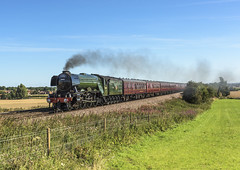 Waverley (4486Merlin) Tags: 60103 england europe exlner flyingscotsman lnerclassa3 northyorkshire railways steam transport unitedkingdom barkstonash gbr waverley wcrc rytc