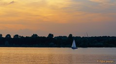 Sailing home (www.petje-fotografie.nl) Tags: nijkerk zeewolde zomervakantie2017 ondergaandezon zeilbootje veluwemeer
