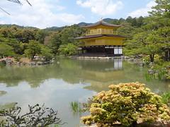 Unedited... (m_artijn) Tags: kinkaku ji temple kyoto jpn gold lake pond reflection green park nature