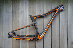 Ammolite-T-Orange-Rahmen-Fully-Frame