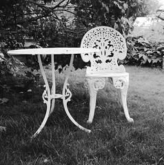 In the garden (rotabaga) Tags: sverige sweden svartvitt värnamo blackandwhite bw bwfp ilford fp4 diy lomo lomography lubitel166 twinlens mediumformat mellanformat 120 6x6