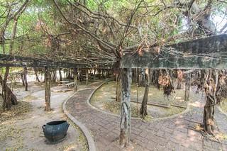 phimai - thailande 58