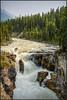 Sunwapta Falls (Maclobster) Tags: sunwapta falls canadian rockies