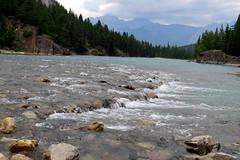 In the Canadian Rockies (Karlov1) Tags: rockies
