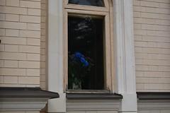 Winter Flowers (alexwinger) Tags: vase white sadness grieve november beauty temple church monastery beige fall autumn window d5200 nikon blue flower