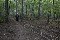 Asylum Path