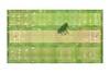 Cricket Pitch 01 (Julian F Jones) Tags: modernart contemporaryart cricket sport graphicdesign grass grandpiano green society6 curioos redbubble