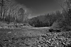 Buffalo National River (Black & White)