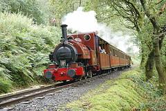 Talyllyn (Mike 7416) Tags: talyllyn railway fletcher jenning no 1 forrest crossing