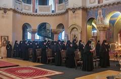 Конференция в Санкт-Петербурге (3) 09.08.2017