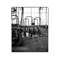 house of glass 4/6 (Michael Herrmann Reiner) Tags: analog mittelformat mamya blackwhite film symmetrie industial nature glass farm mist hightkey white kodak glasshouse geometric neat paspartout iso200 analogisnotdead bw documentation study student htwg constance water mirror sun contrst