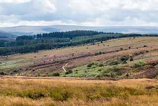 Dartmoor National Park landscape