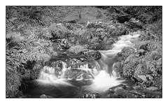 Waterval bij Tanybwlch
