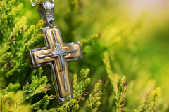 Christening cross (pg_art) Tags: christening cross macro macroworld macrodreams amazing sigma 105mm nikon wow depthoffield closeup floral d750 sun bokeh dof