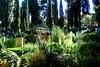 Protestant Cemetery Rome DSC00266_HDR.jpg