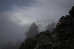 trail to the sun (Toni_V) Tags: m2404927 rangefinder digitalrangefinder messsucher leica leicam mp typ240 type240 28mm elmaritm12828asph hiking wanderung randonnée escursione wallis valais oberwallis mattertal europaweg grächenzermatt trail wanderweg sentiero fog nebel mist alps alpen mountains switzerland schweiz suisse svizzera svizra europe summer sommer ©toniv 2017 170812