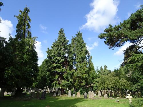 Overleigh Cemetery, 2017 Aug 13