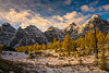 DSC08271 (www.mikereidphotography.com) Tags: larches fallcolors autumn canada canadianrockies lakemoraine larchvalley sentinelpass 85mm otus zeiss mirrorless a7r2 landscape golden