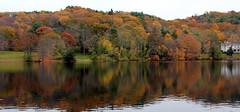 El reflejo deja ver la parte material,como vemos el alma en las personas??? (gilmavargas) Tags: tierra earth foliage lake river landscape water tree leaf forest park