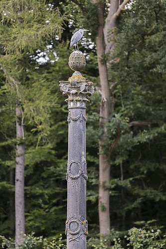 Kolona su garniu
