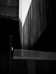 P9170200 (marcin.ciaś) Tags: warsaw warszawa bulwary monochrome olympus