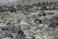 Fossil Falls 01 (12) (PorchPhoto) Tags: nikon nikond70s california desert desolate rugged 395 volcanic lava cinder owensvalley old ancient
