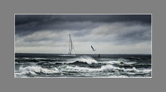 """""""Oh The Canvas Can Do Miracles"""" (windshadow2) Tags: 12miledrive boat newport nikon sailboat storm wave waves rhode island sailing stormy"""
