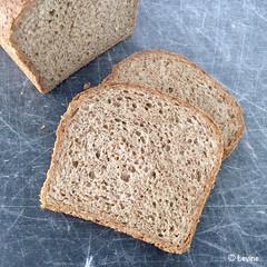 Volkorenbrood (Levine1957) Tags: brood bread brot wholewheat volkoren