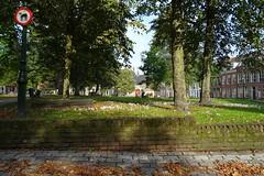 20170922 04 Groningen - Martinikerkhof